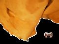 Fodere di maiale